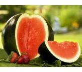 Watermelon Sugar Baby Citrullus Lanatus 2g Seeds
