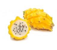 Exotic Dragon Fruit Pitaya Yellow! 12 Seeds