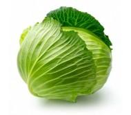Cabbage 0,25gr.