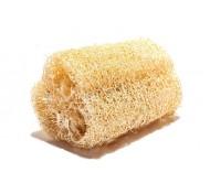 Luffa - cucumber sponge, 2,5g seeds