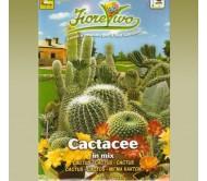 Cactus Mix - 0,1g seeds