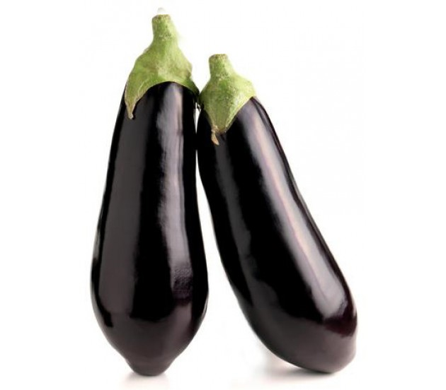 how to grow from seeds eggplant