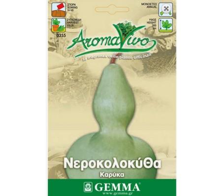 Calabash Bottle gourd 1g Seeds