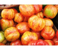 Tomato Tigerella 30 Seeds
