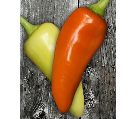 Santa Fe Grande Pepper - 15 Seeds