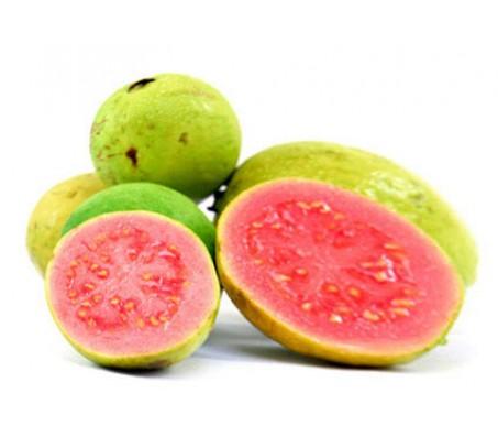Guava Psidium Guajava 15 Seeds